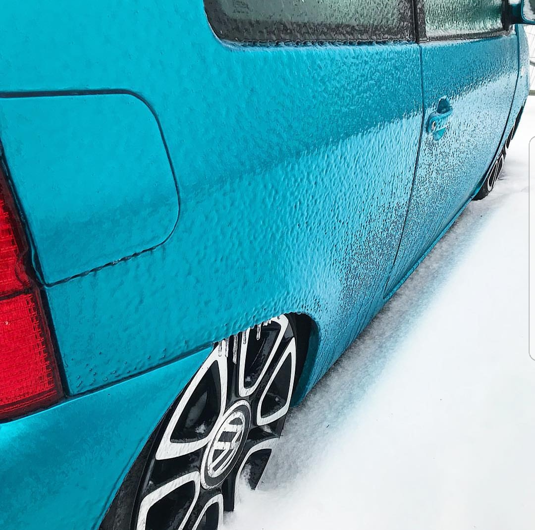 frozen Lupo